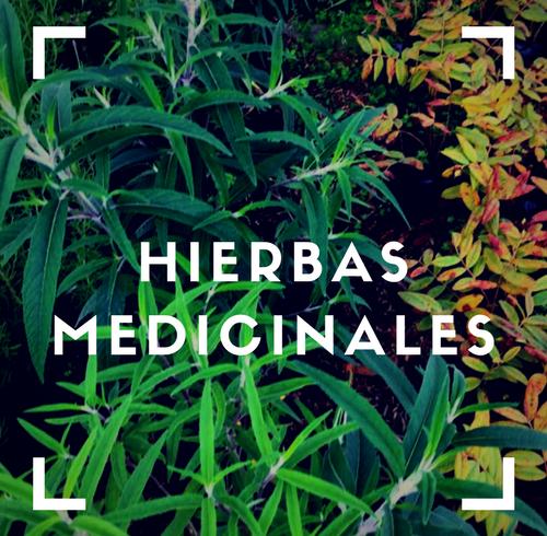 HIERBAS MEDICINALES(1)