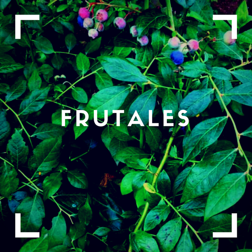 frutales(1)